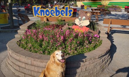 My Knoebel's Adventure